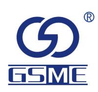 桂林斯壮微电子有限责任公司招聘:公司标志 logo