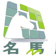 柳州市新名马广告传媒有限公司招聘:公司标志 logo