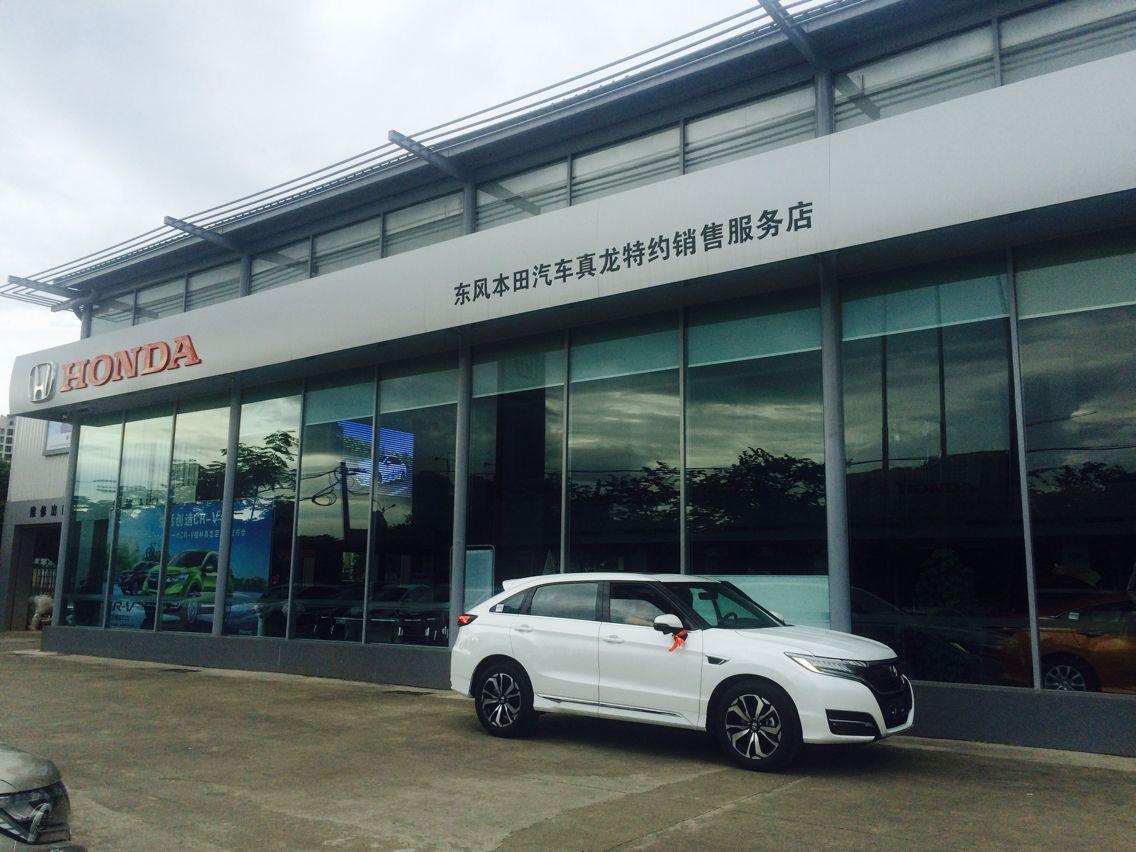 【真龙东本】桂林真龙东本汽车销售有限公司招聘:公司标志 logo
