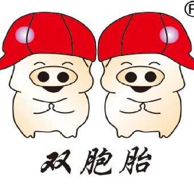 柳州双胞胎饲料有限公司招聘:公司标志 logo