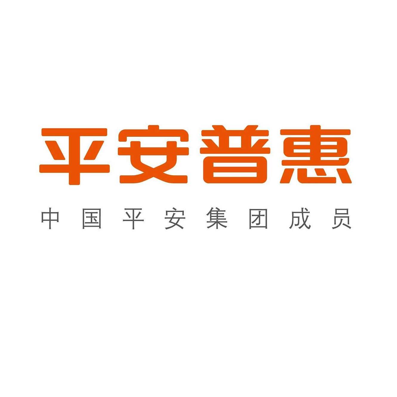 平安普惠投资有限公司柳州分公司东环大道营业部招聘:公司标志 logo