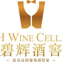 柳州碧辉商贸有限公司招聘:公司标志 logo